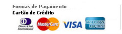 Visa - mastercard - american - diners - BNDS